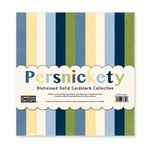 The Paper Loft - Persnickety Collection - 12 x 12 Distressed Cardstock Pack