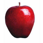 Paper House Productions - New York City Collection - Mini Die Cut Piece - Red Delicious Apple