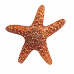 Paper House Productions - Travel Collection - Mini Die Cut Piece - Starfish