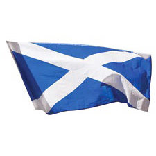Paper House Productions - Scotland Collection - Mini Die Cut Piece - Scottish Flag