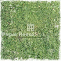 Paper House Productions - Lacrosse Collection - 12 x 12 Paper - Distressed Grass