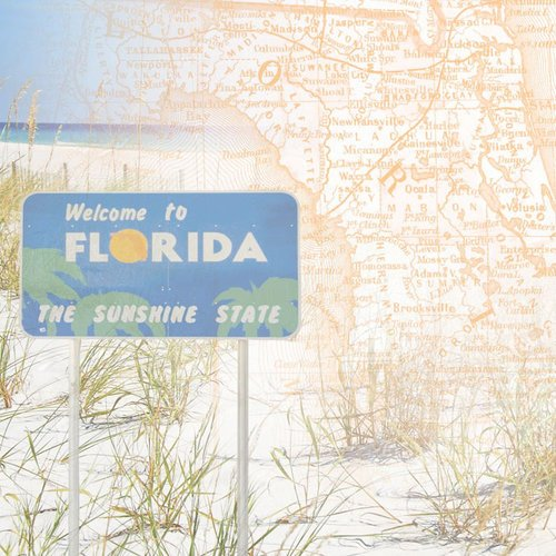 Paper House Productions - Florida Collection - 12 x 12 Paper - Florida Map