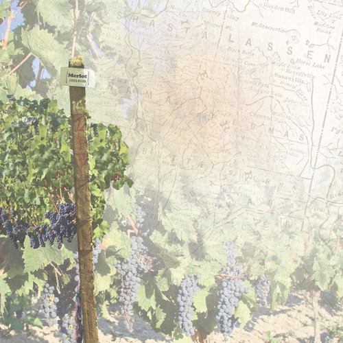 Paper House Productions - Wine Country Collection - 12 x 12 Paper - Wine Country Map
