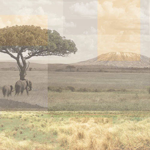 Paper House Productions - Africa Collection - 12 x 12 Paper - Africa Collage