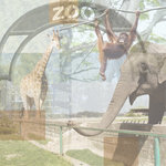 Paper House Productions - Zoo Collection - 12 x 12 Paper - Zoo Collage