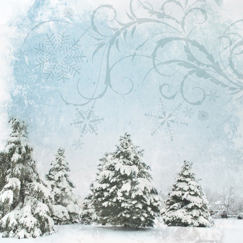 Paper House Productions - Christmas Collection - 12 x 12 Paper - Winter Trees