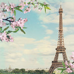 Paper House Productions - France Collection - 12 x 12 Paper - Spring in Paris