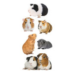 Paper House Productions - StickyPix Stickers - Guinea Pigs