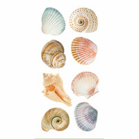 Paper House Productions - StickyPix Stickers - Sea Shells