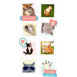 Paper House Productions - Snap Shots - Cardstock Stickers - Cats