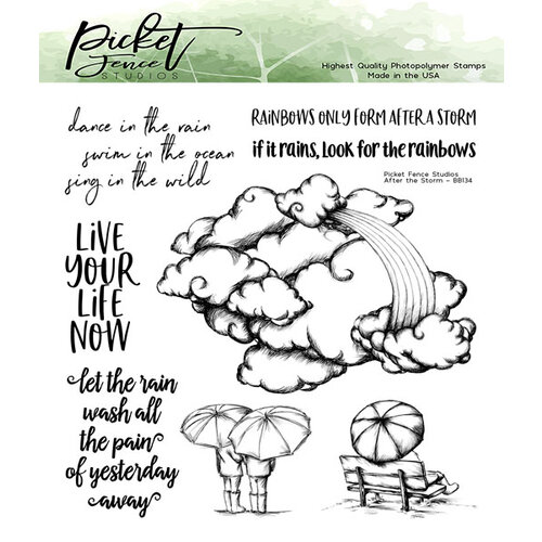 Picket Fence Studios - Clear Photopolymer Stamps - After the Storm
