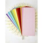Picket Fence Studios -Slimline Envelopes - Rainbow