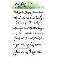 Picket Fence Studios - Clear Photopolymer Stamps - Fancy Friendship Sentiments