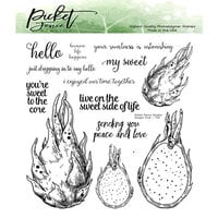 Picket Fence Studios - Clear Photopolymer Stamps - Dragon Fruit
