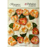Petaloo - Botanica Collection - Floral Embellishments - Velvet Pansies - Apricot