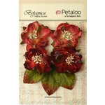 Petaloo - Botanica Collection - Floral Embellishments - Sugared Blooms - Burgundy