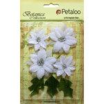 Petaloo - Botanica Collection - Floral Embellishments - Vintage Velvet Poinsettias - White