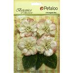 Petaloo - Botanica Collection - Floral Embellishments - Vintage Velvet Peonies - Ivory