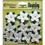 Petaloo - Botanica Collection - Floral Embellishments - Paper Poinsettias - Mini - White