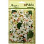 Petaloo - Botanica Collection - Floral Embellishments - Vintage Velvet Dogwoods - Ivory