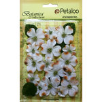 Petaloo - Botanica Collection - Floral Embellishments - Vintage Velvet Dogwoods - White