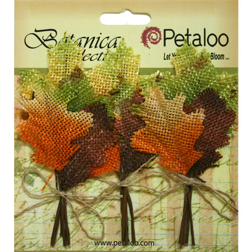 Petaloo - Botanica Collection - Floral Embellishments - Fall Maple Leaf Picks - Burlap