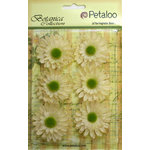 Petaloo - Botanica Collection - Floral Embellishments - Gerber Daisy - Ivory