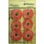Petaloo - Botanica Collection - Floral Embellishments - Gerber Daisy - Coral