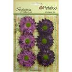 Petaloo - Botanica Collection - Floral Embellishments - Gerber Daisy - Purple