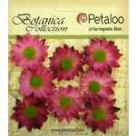 Petaloo - Botanica Collection - Floral Embellishments - Mini Gerber Daisy - Fuchsia