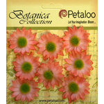 Petaloo - Botanica Collection - Floral Embellishments - Mini Gerber Daisy - Coral
