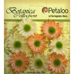 Petaloo - Botanica Collection - Floral Embellishments - Mini Gerber Daisy - Peach