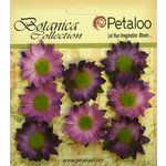 Petaloo - Botanica Collection - Floral Embellishments - Mini Gerber Daisy - Purple