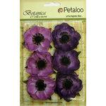 Petaloo - Botanica Collection - Floral Embellishments - Anenome - Purple