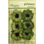 Petaloo - Botanica Collection - Floral Embellishments - Anenome - Pistachio