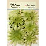Petaloo - Burlap and Canvas Collection - Floral Embellishments - Daisy Flower Layers - Pistachio