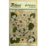 Petaloo - Burlap and Canvas Collection - Floral Embellishments - Dogwood - Canvas - Ivory