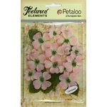 Petaloo - Burlap and Canvas Collection - Floral Embellishments - Dogwood - Canvas - Pink
