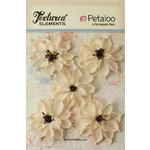 Petaloo - Textured Elements Collection - Floral Embellishments - Burlap Wild Sunflowers - Ivory