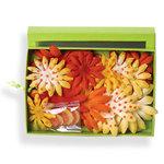 Petaloo - Tutti Fruitti Collection - Flowers - Daisy Box Blend - Large - Yellow and Orange