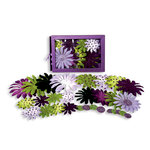 Petaloo - Flora Doodles - Daisy Box Blend - Large - Lavender Purple Green and Black