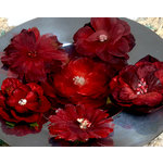Petaloo - Chantilly Collection - Mixed Blooms Flowers - Red Burgundy