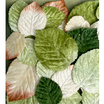 Petaloo - Chantilly Collection - Velvet Leaves
