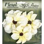Petaloo - Chantilly Collection - Velvet Wild Roses - Cream
