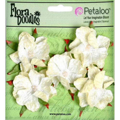 Petaloo - Flora Doodles Collection - Velvet Wild Roses - Small - Cream
