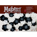 Petaloo - Mulberry Street Collection - Handmade Paper Flowers - Mini Delphiniums - Black and White
