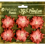 Petaloo - Penny Lane Collection - Floral Embellishments - Wild Roses - Mulberry Street - Orange