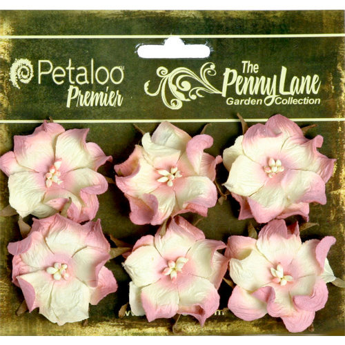 Petaloo - Penny Lane Collection - Floral Embellishments - Wild Roses - Mulberry Street - Blush