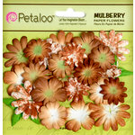 Petaloo - Flora Doodles Collection - Mulberry Flowers - Mini Daisies with Tyedye - Mocha