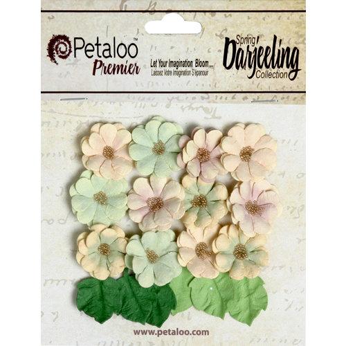 Petaloo - Darjeeling Collection - Floral Embellishments - Mini Daisies with Leaves - Pistachio